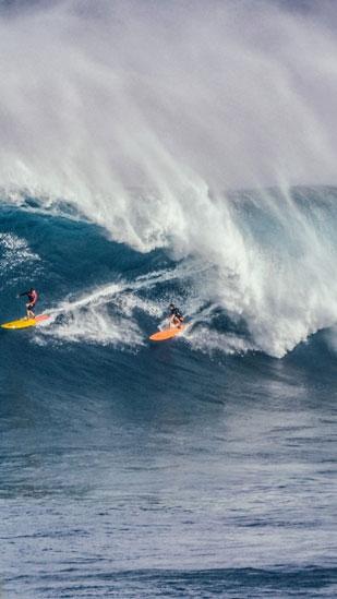 Сърфисти