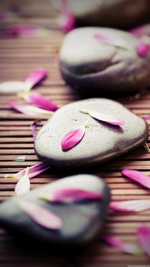 Zen Stones, Pink Petals