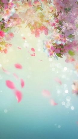 iPhone 6 wallpaper пролет