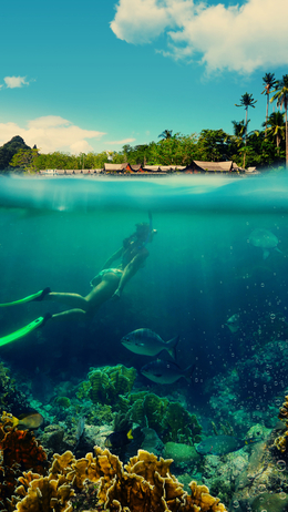 Подводен поглед
