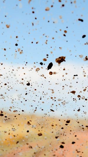 dust-in-the-wind-pattern