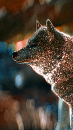 wolf-digital-dot-art-red