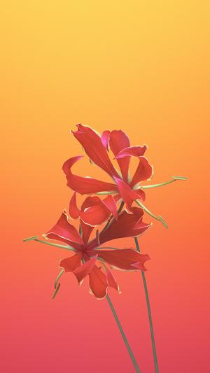 apple-ios11-iphonex-flower-art-illustration